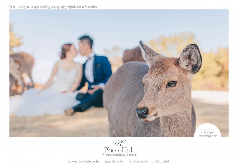 prewedding-overseas-japan-nana-photohub